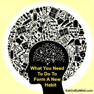 habit-and-brain